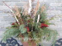 winter greenery pots at craftygardener.ca