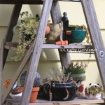 the ladder planter at craftygardener.ca