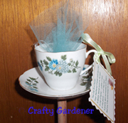 teacup feeder by craftygardener.ca
