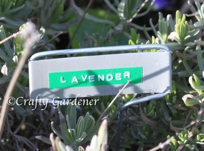 Plant Markers That Last