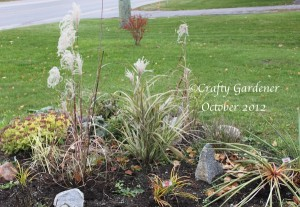the front garden at craftygardener.ca