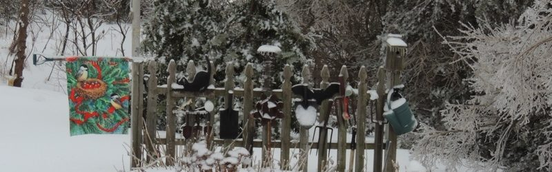 The Fence Garden in December