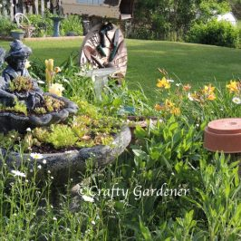 windmill garden on June 6, 2015 at craftygardener.ca