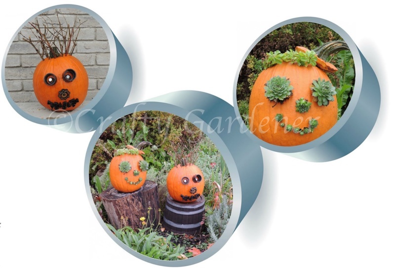 the pumpkin heads at craftygardener.ca