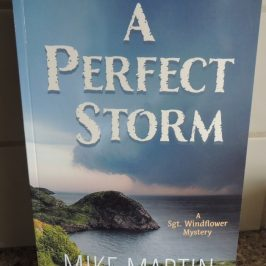 A Perfect Storm by Mike Martin