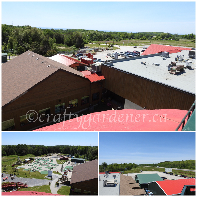 views from the top of the Big Apple, Colbourne, Ontario