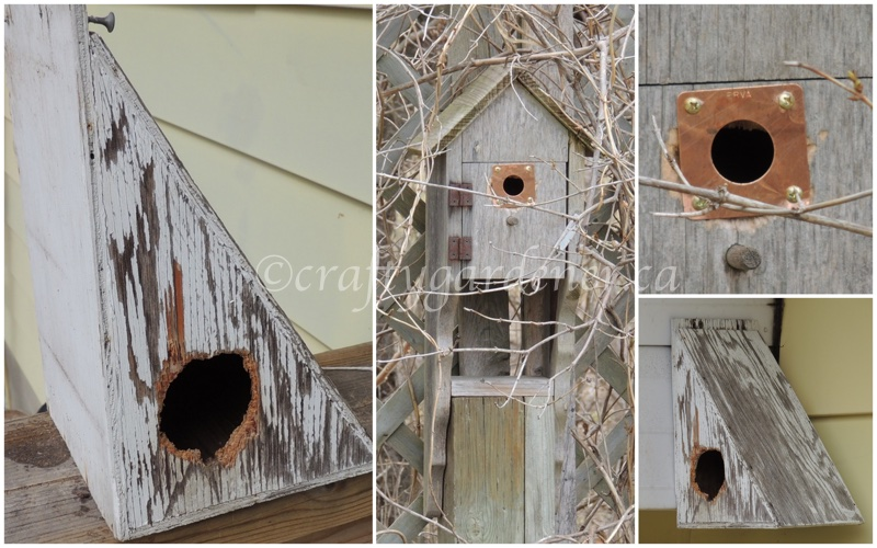 repairing birdhouses at craftygardener.ca