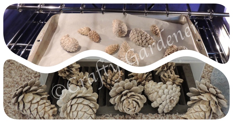 changing the colour of pinecones at craftygardener.ca