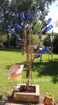 converting an old lilac bush into a bottle tree at craftygardener.ca