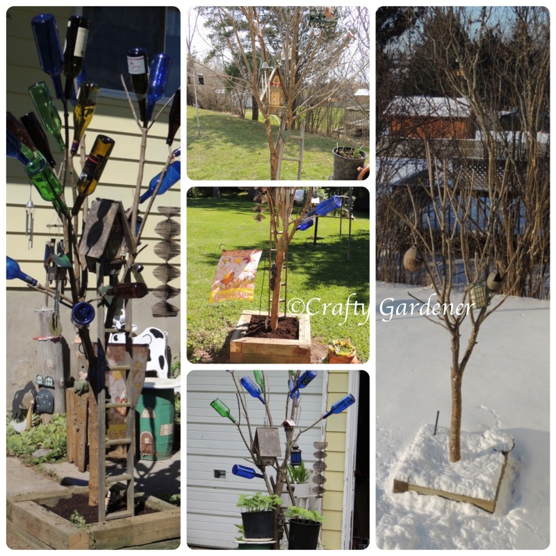 bottle tree15a