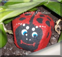 pet rock ladybugs at craftygardener.ca