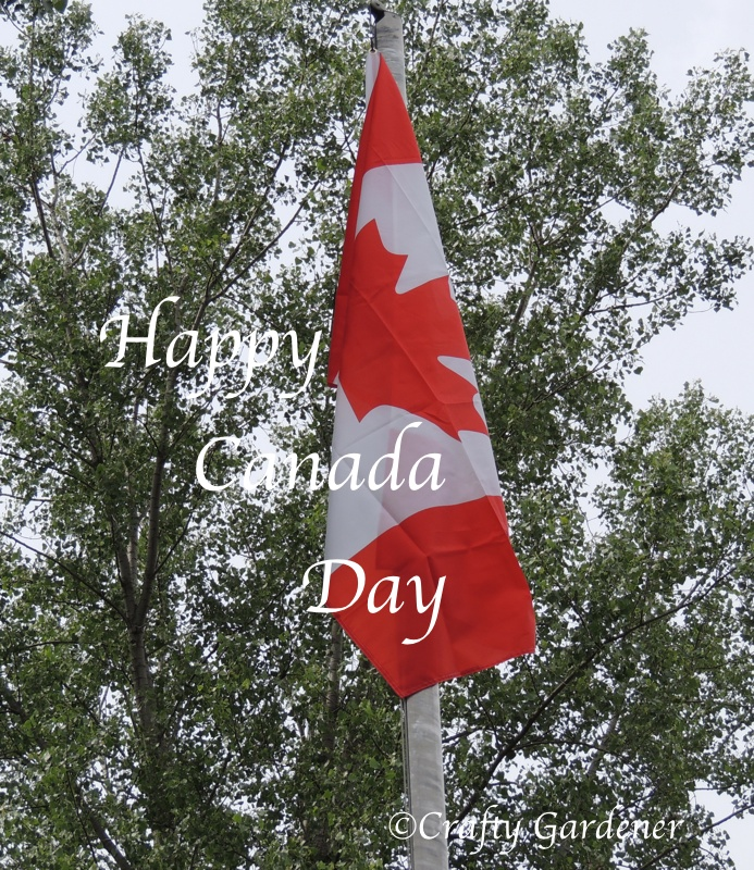 The Canada flag flies proudly in our garden all year round.