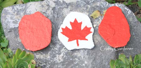 rock Canadian flag at craftygardener.ca