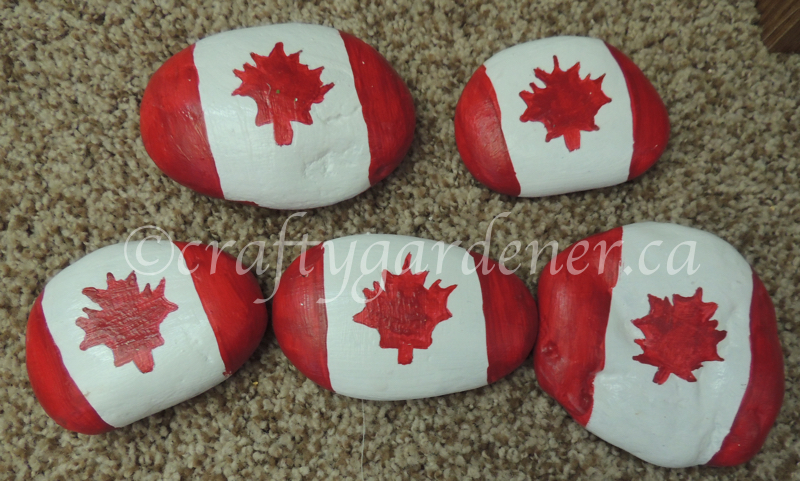how to paint Canada flag rocks at craftygardener.ca