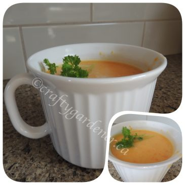 'Soup'er Sunday Carrot and Squash Soup