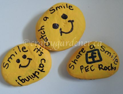 catch a smile, share a smile at craftygardener.ca