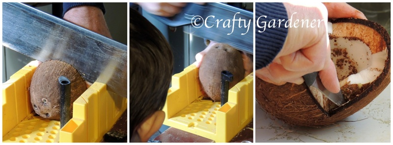 how to make a coconut feeder at craftygardener.ca