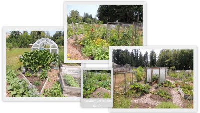 the community gardens in Sooke, British Columbia