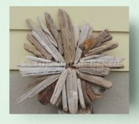 The Driftwood Starburst