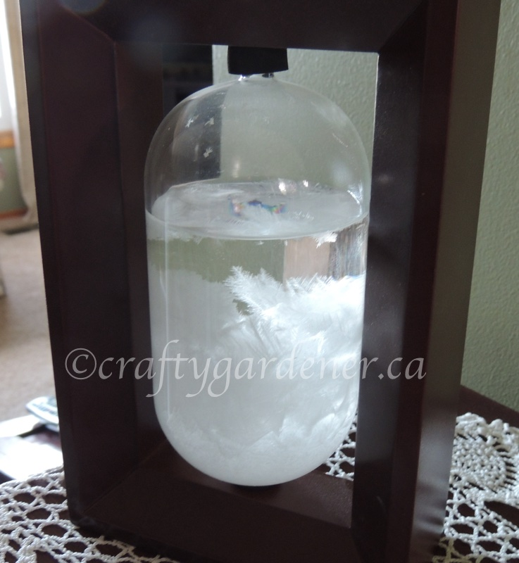 the Fitzroy storm glass at craftygardener.ca