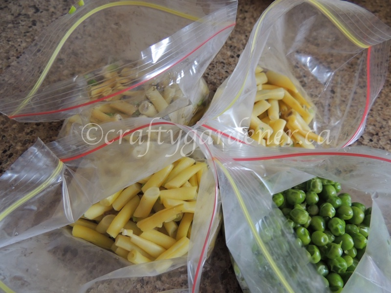 freezing serving sized portions of peas and beans at craftygardener.ca