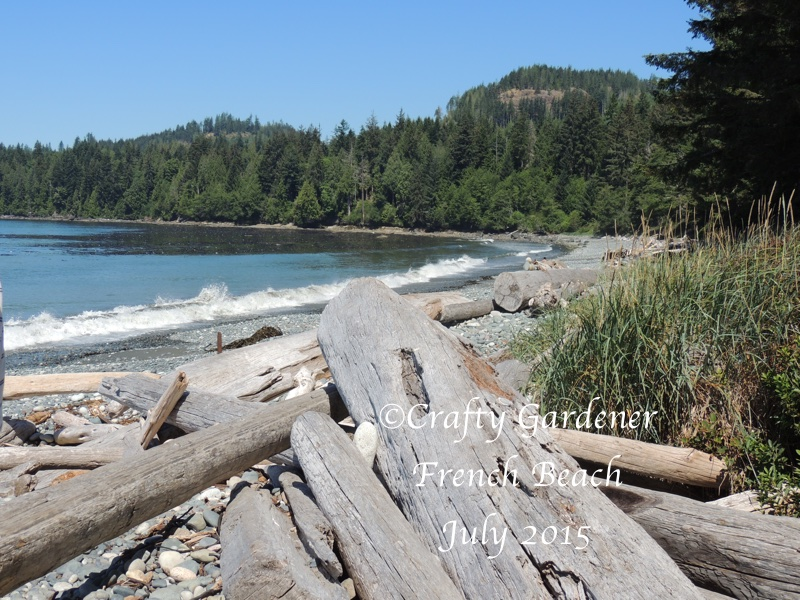 French Beach, Vancouver Island, British Columbia July 2015