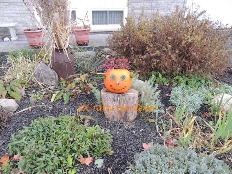 Jack O'Garden at craftygardener.ca