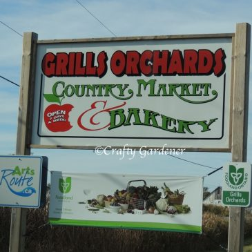 Grills Orchard