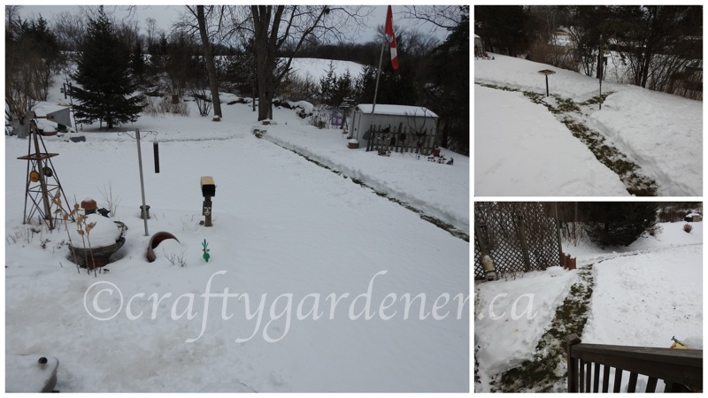January 10, 2018 - garden paths at craftygardener.ca