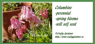 Seed Label Printables Columbine