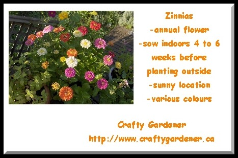 Seed Label Printables Zinnias