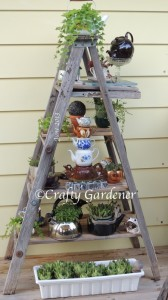 ladderplanter2013a