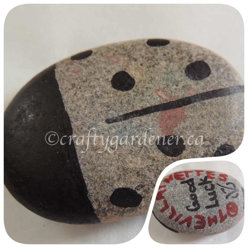 a rock from the Cobourg Ecology Garden by craftygardener.ca