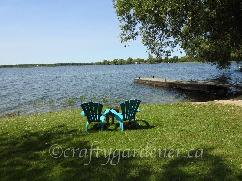 views at the cottage from craftygardener.ca