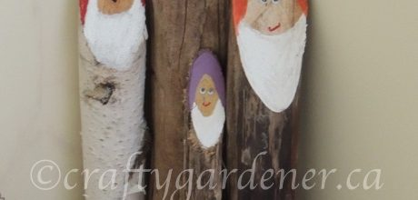 A Family of Log Gnomes