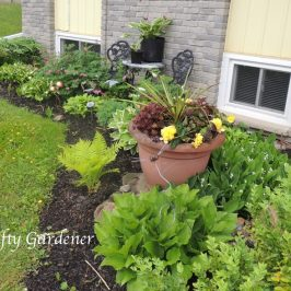 front shade garden on May 25, 2015 at craftygardener.ca