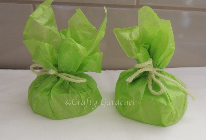 soap with an incentive at craftygardener.ca