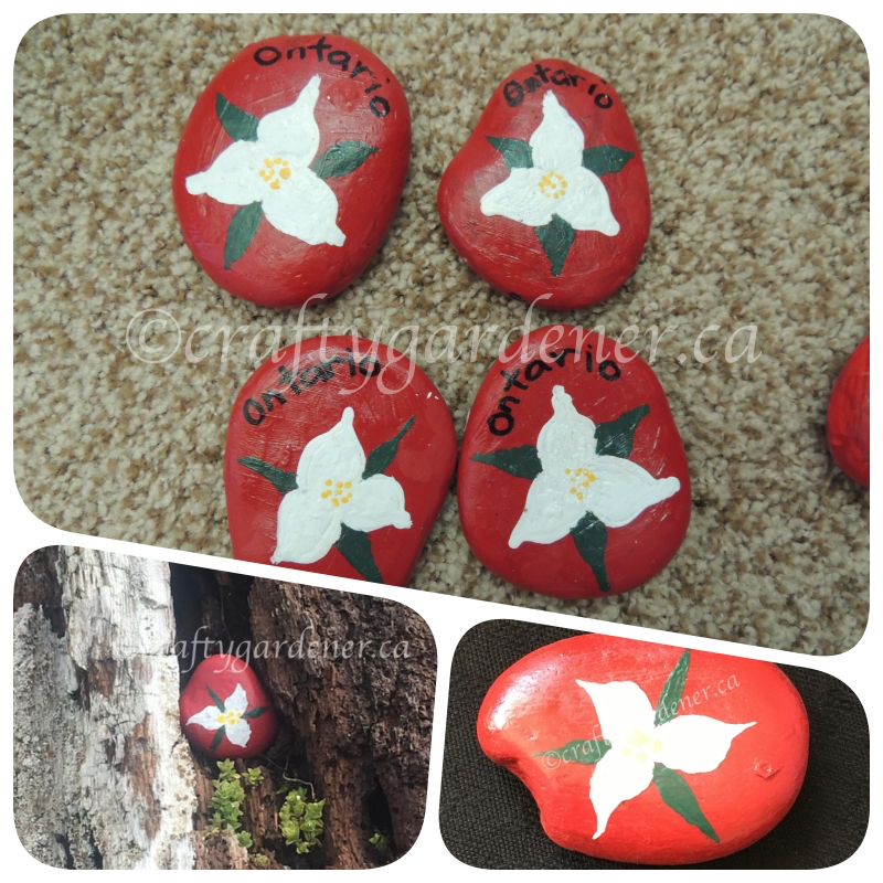 how to paint trillium rocks at craftygardener.ca