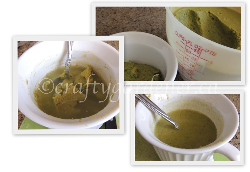 making green pea soup at craftygardener.ca