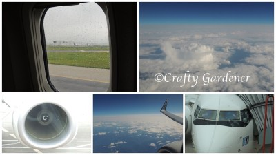 the flight to British Columbia at craftygardener.ca