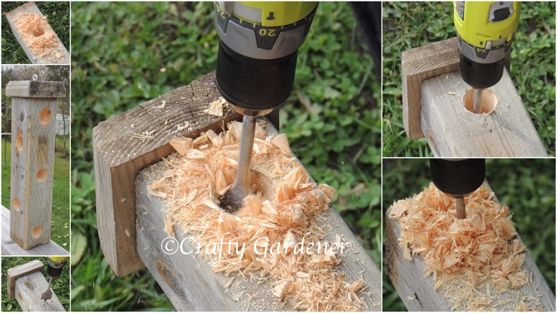 an old post made into a suet feeder at craftygardener.ca