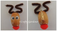 reindeer craft at craftygardener.ca