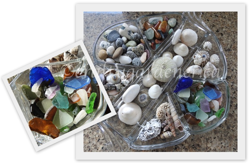displaying the sea glass, shells and rocks at craftygardener.ca
