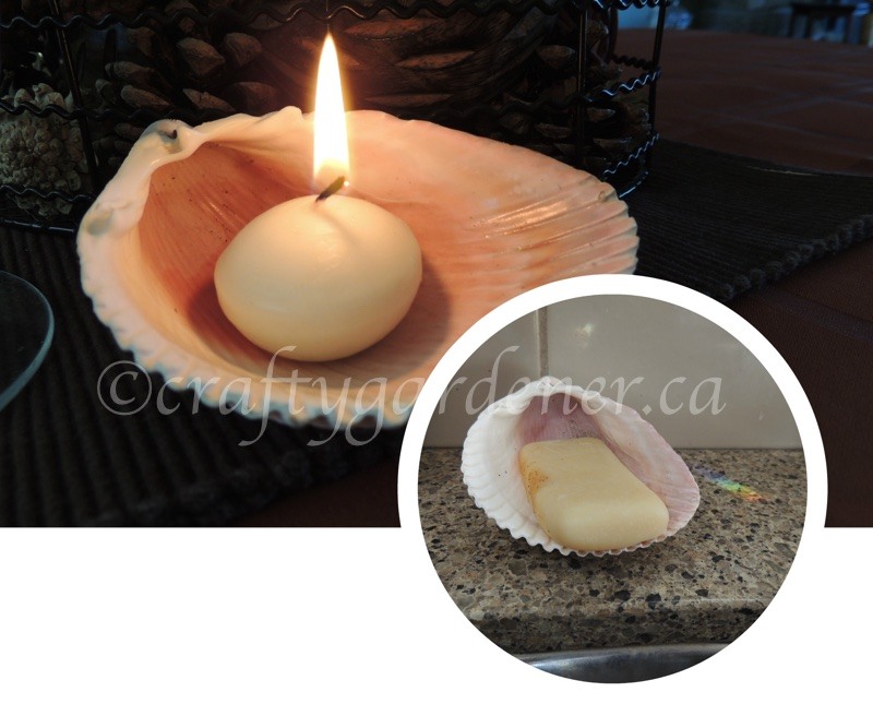 the shell collection at craftygardener.ca