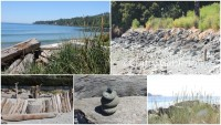 amazing scenes from the coast in British Columbia at craftygardener.ca