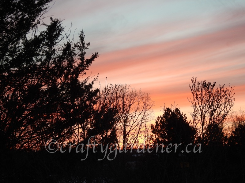 January 13, 2018 sunset at craftygardener.ca