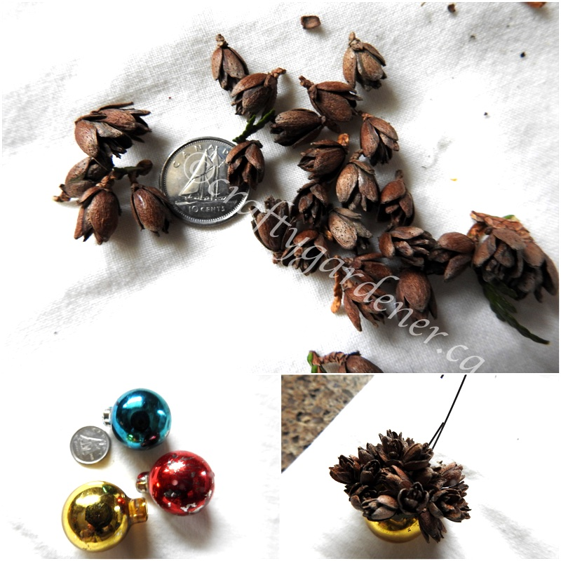 making tiny pinecone ornaments at craftygardener.ca