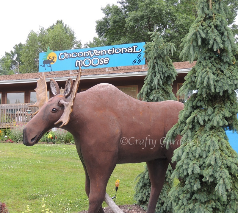 The UnconVentional mOOse