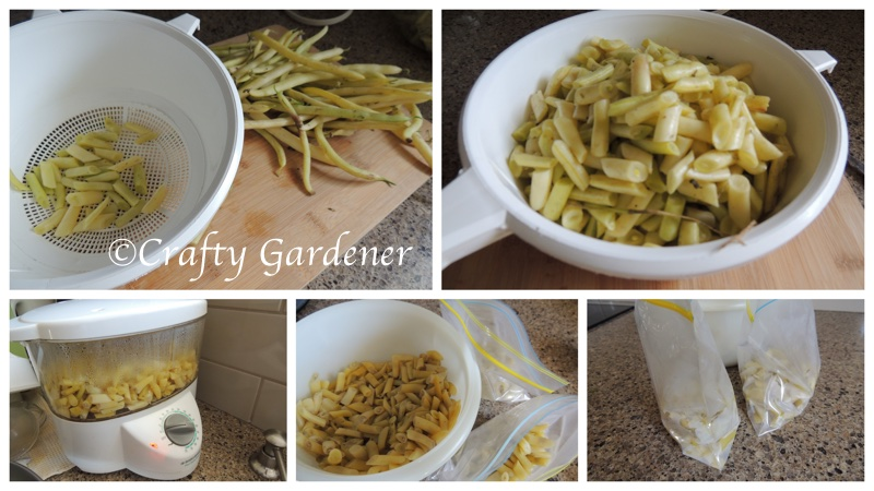 delicious yellow beans at craftygardener.ca