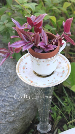 Teacup Feeders to Planters